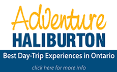 Adventure Haliburton logo